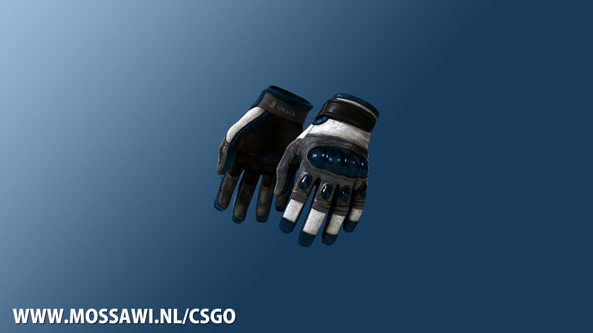 Titan gloves