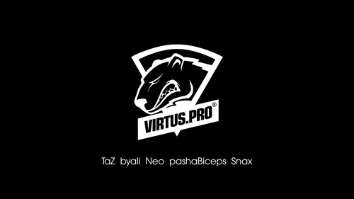Virtus.pro black/white