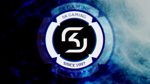 GO SK GAMING