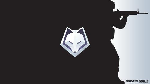 Black with logo - WinterFox